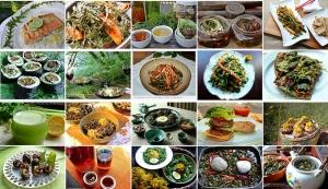 20 ways to eat dandelion by Yujin A. Hwang